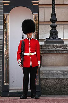 Buckingham-palace-guard-11279634947G5ru.jpg